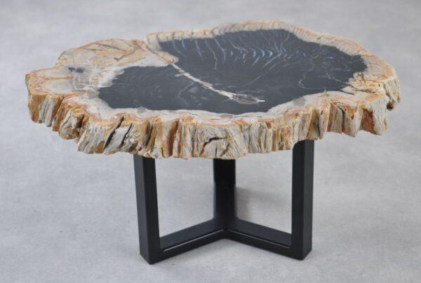 Couchtisch versteinertes Holz 35206