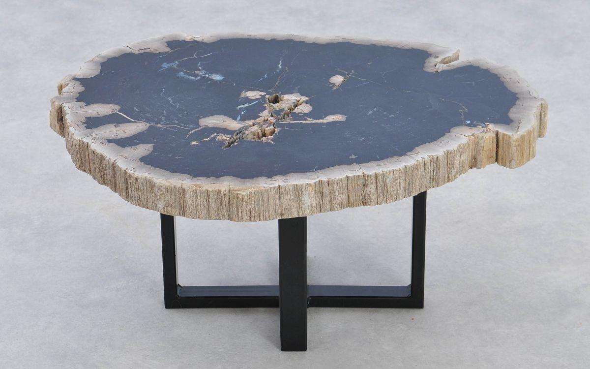 Couchtisch versteinertes Holz 37161