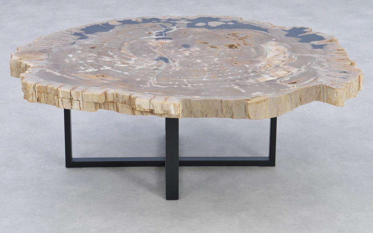 Couchtisch versteinertes Holz 37162