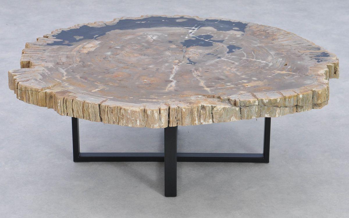 Couchtisch versteinertes Holz 37167
