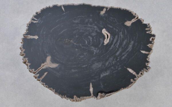 Couchtisch versteinertes Holz 37169