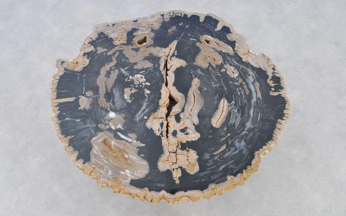 Couchtisch versteinertes Holz 37171