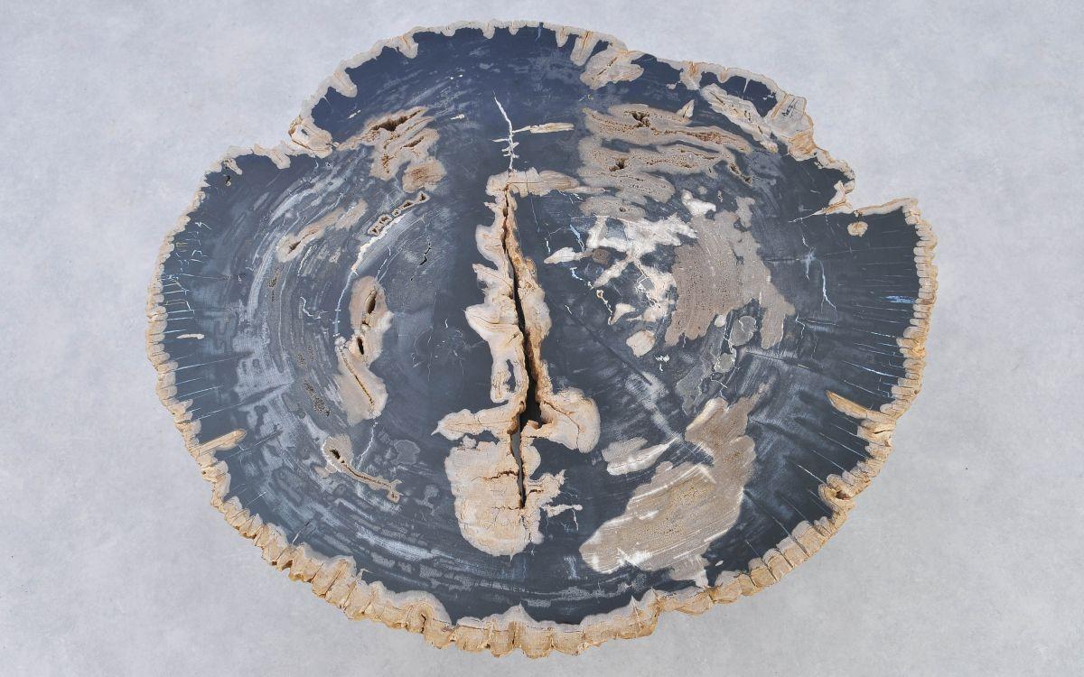 Couchtisch versteinertes Holz 37173