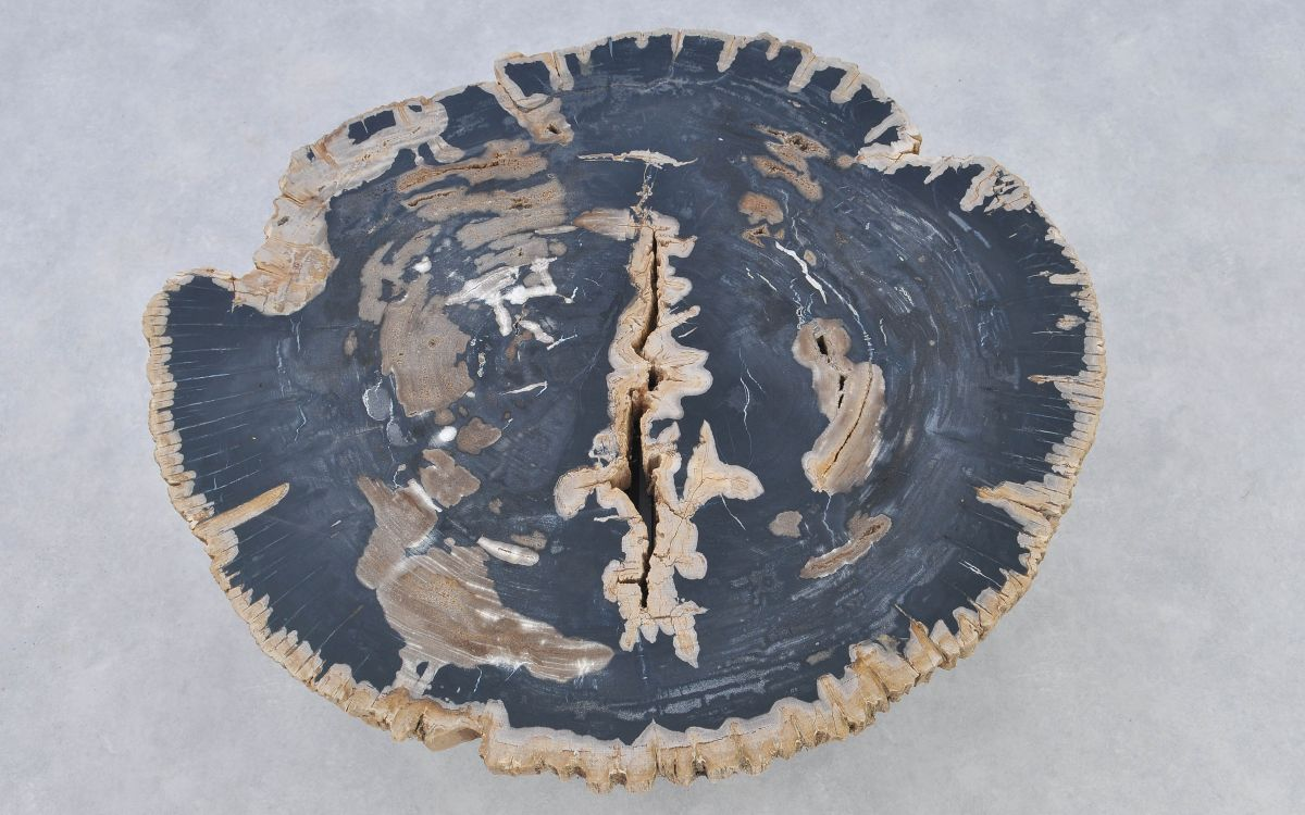 Couchtisch versteinertes Holz 37174