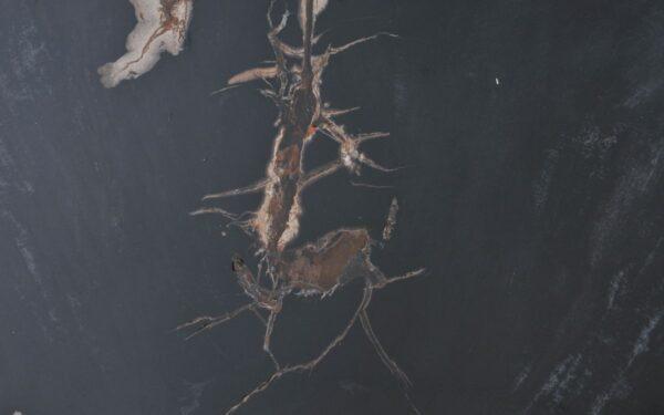 Couchtisch versteinertes Holz 37177