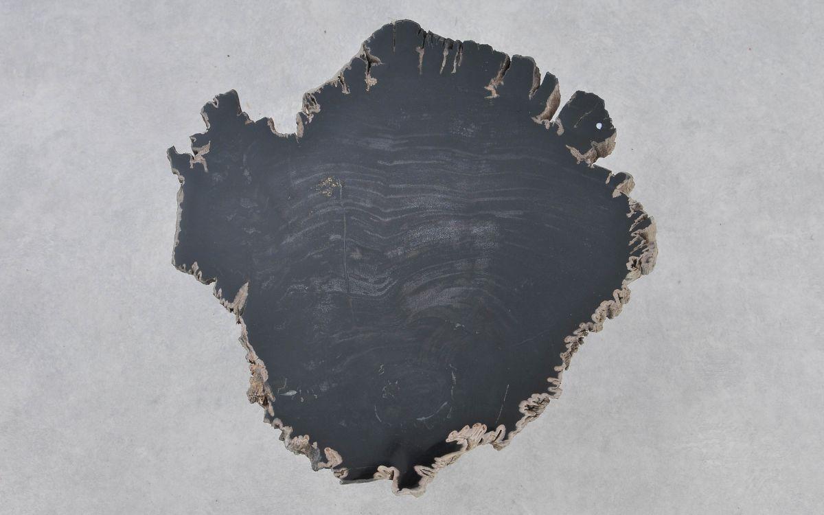 Couchtisch versteinertes Holz 37180