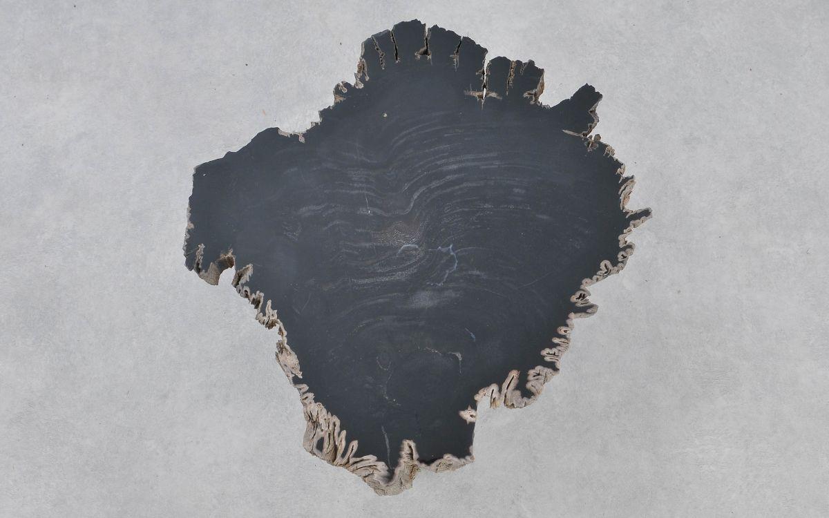 Couchtisch versteinertes Holz 37181