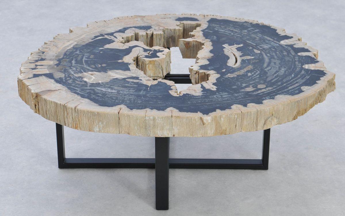 Couchtisch versteinertes Holz 37183