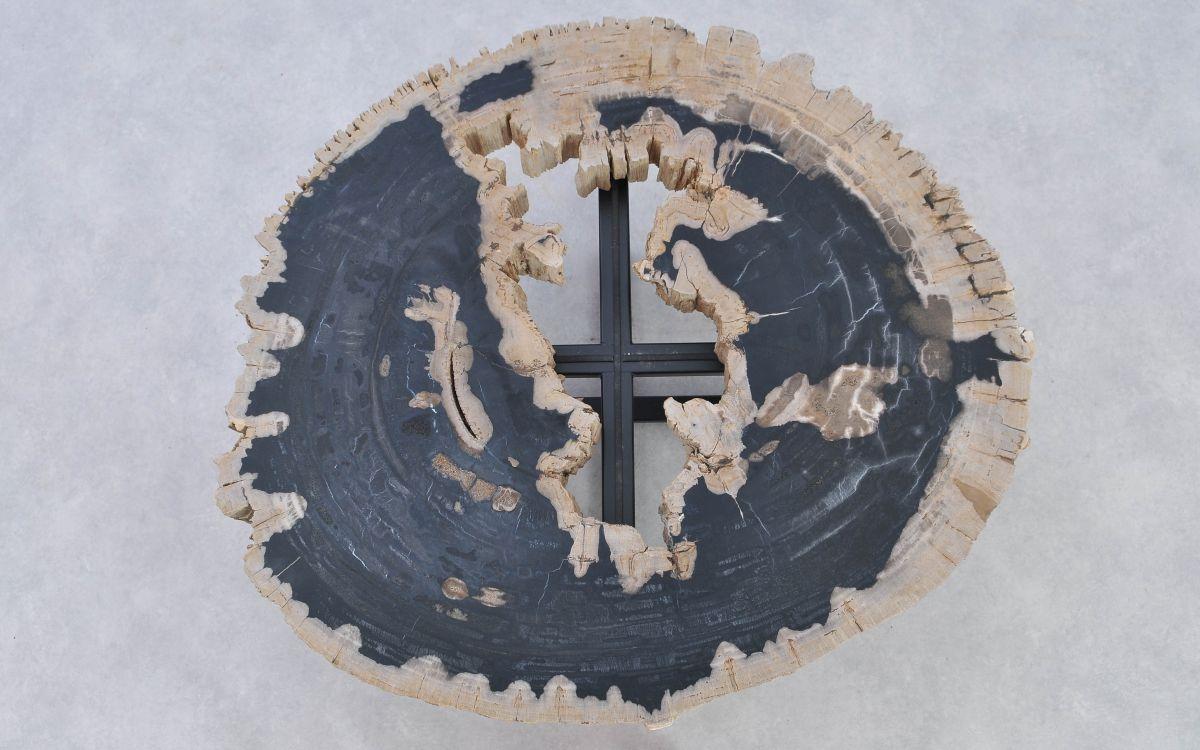 Couchtisch versteinertes Holz 37184