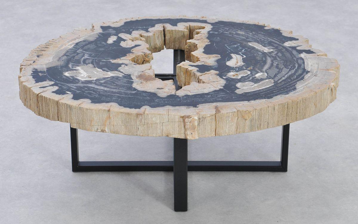 Couchtisch versteinertes Holz 37185