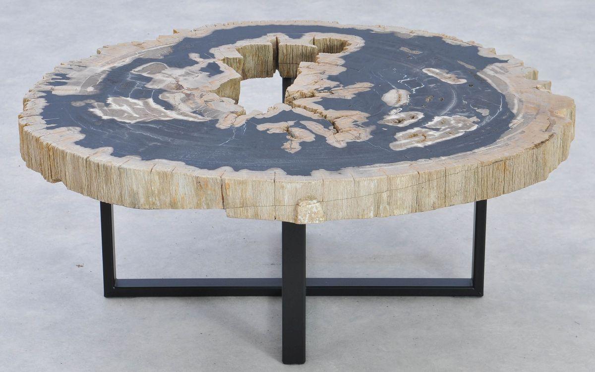 Couchtisch versteinertes Holz 37187