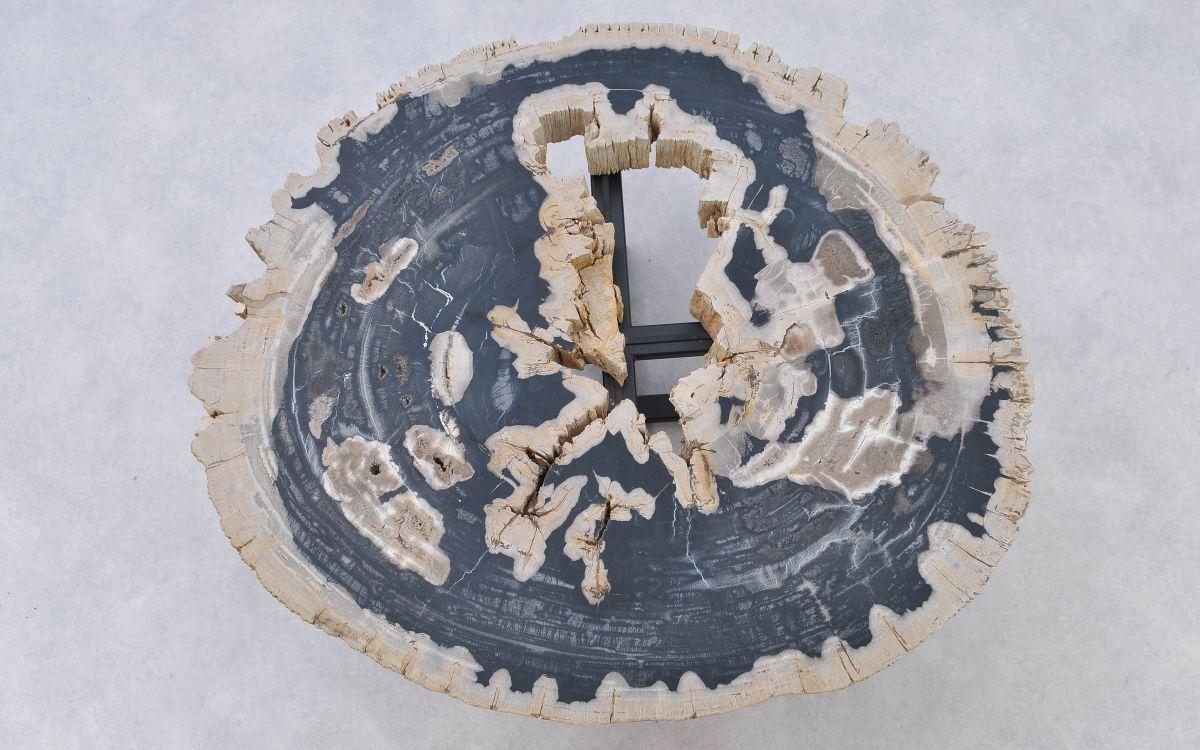 Couchtisch versteinertes Holz 37188