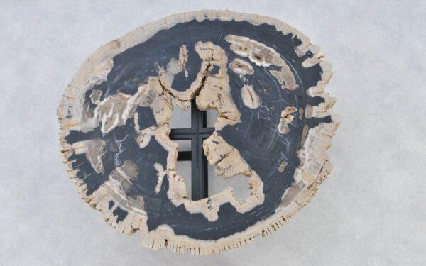 Couchtisch versteinertes Holz 37189