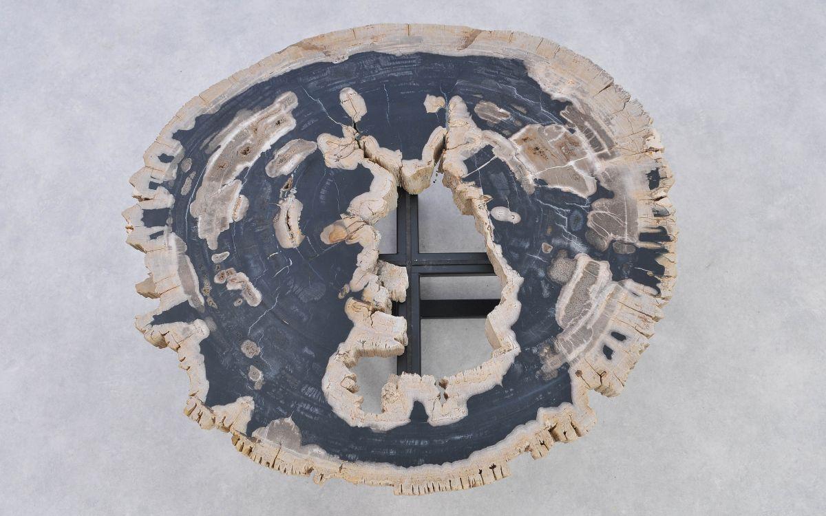 Couchtisch versteinertes Holz 37190