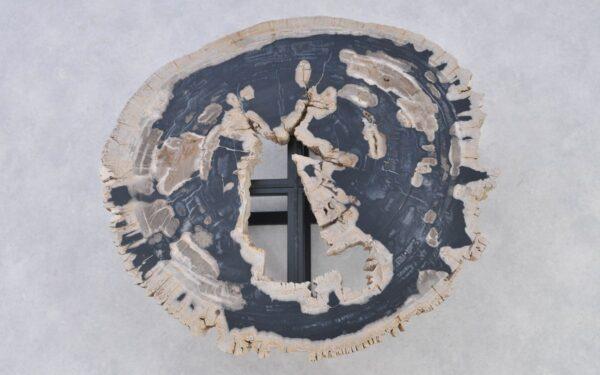 Couchtisch versteinertes Holz 37191