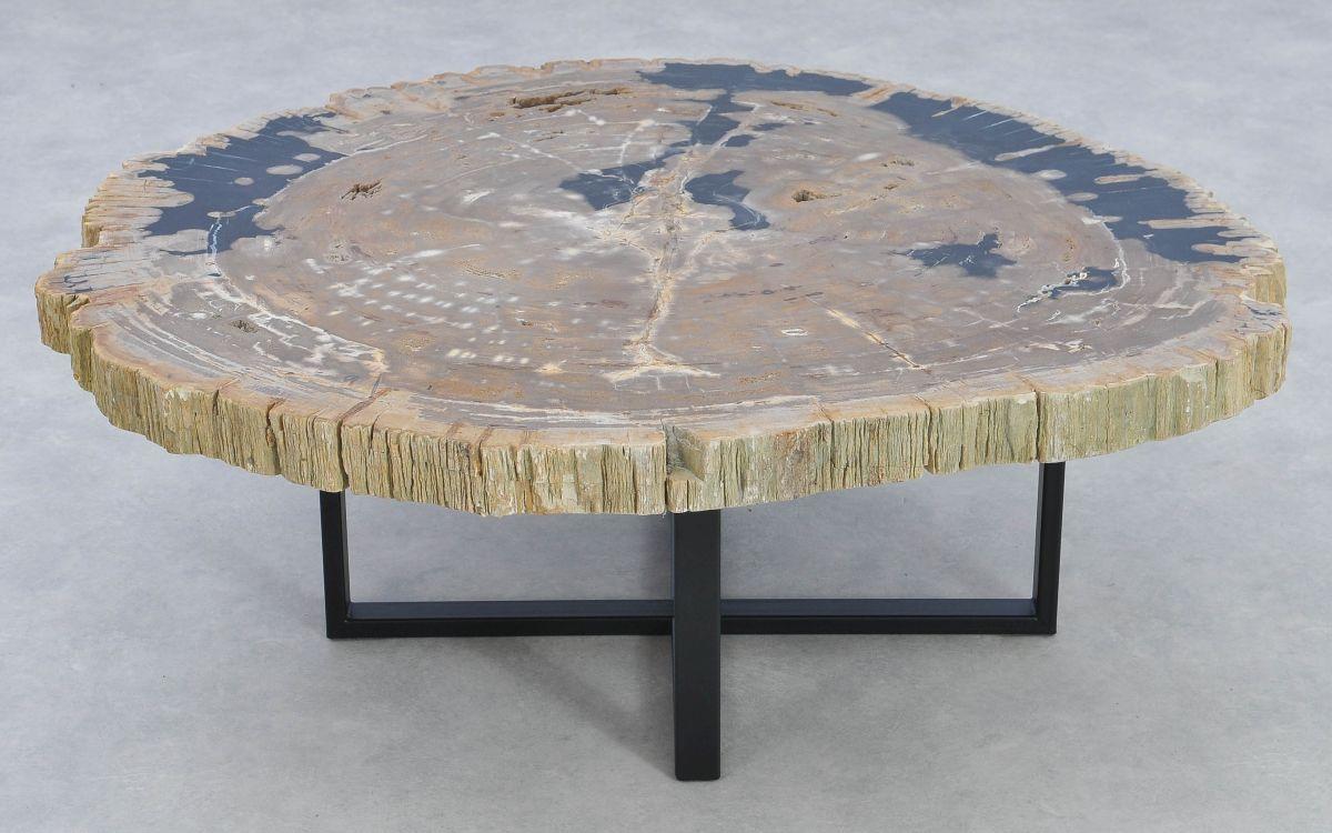 Couchtisch versteinertes Holz 37192