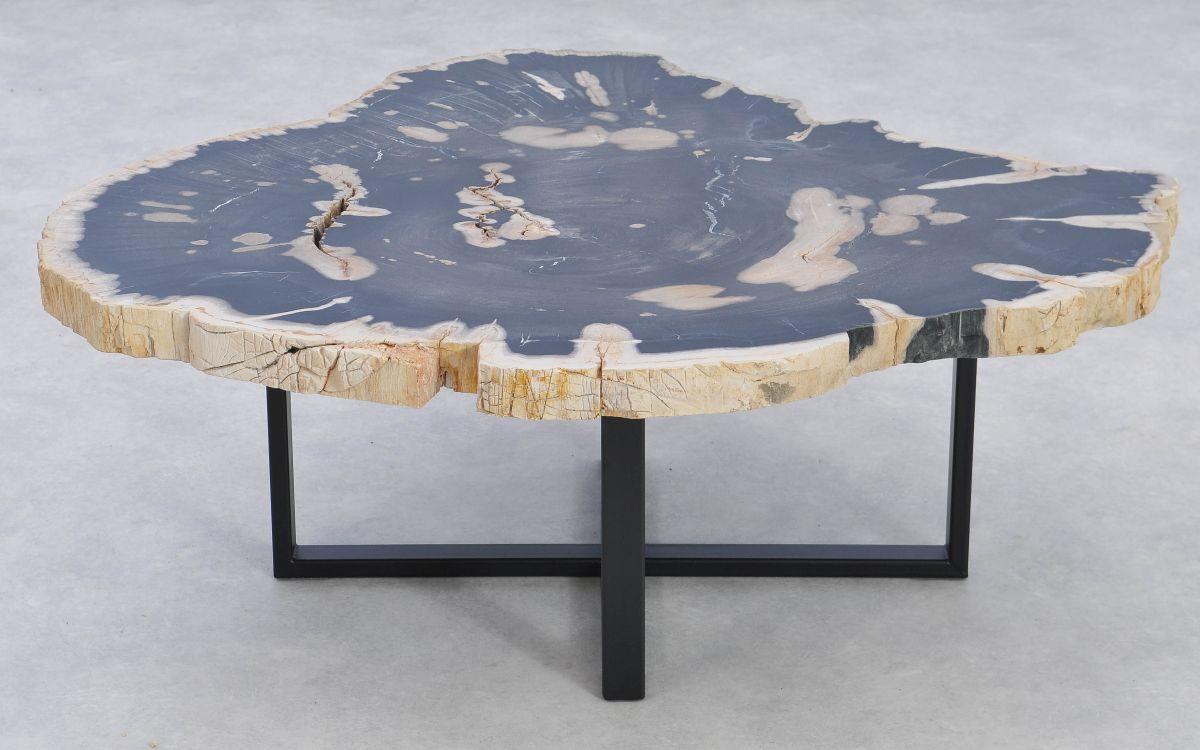 Couchtisch versteinertes Holz 37195