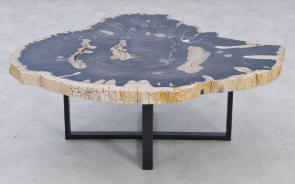Couchtisch versteinertes Holz 37196
