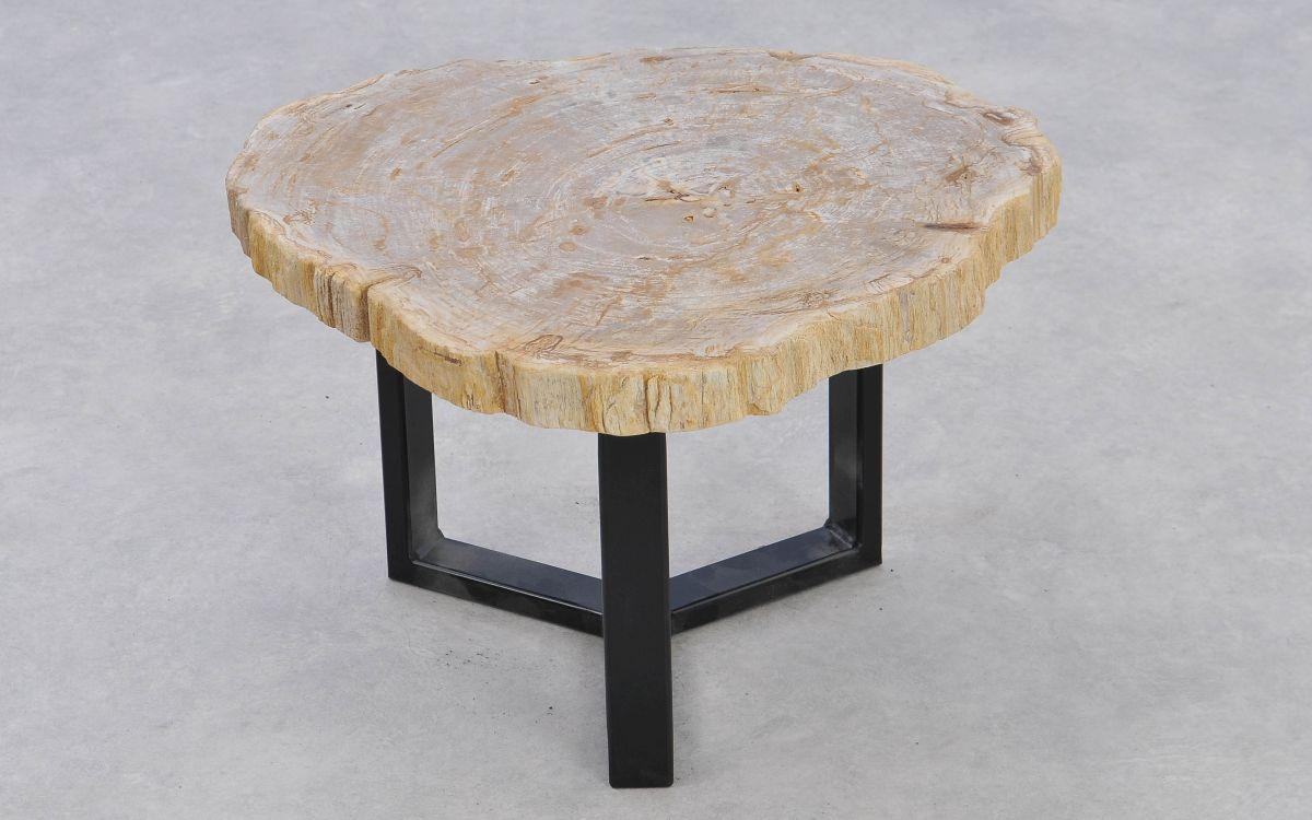 Couchtisch versteinertes Holz 37203