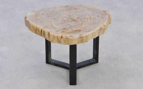 Couchtisch versteinertes Holz 37204