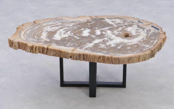 Couchtisch versteinertes Holz 37208