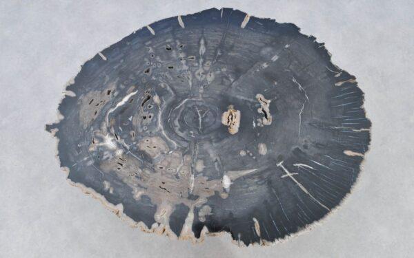 Couchtisch versteinertes Holz 37211