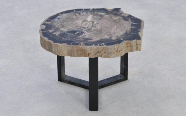 Couchtisch versteinertes Holz 37217
