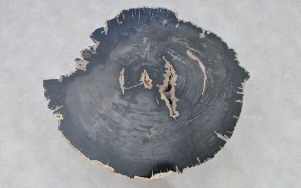 Couchtisch versteinertes Holz 37221