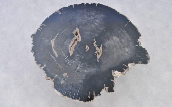 Couchtisch versteinertes Holz 37222