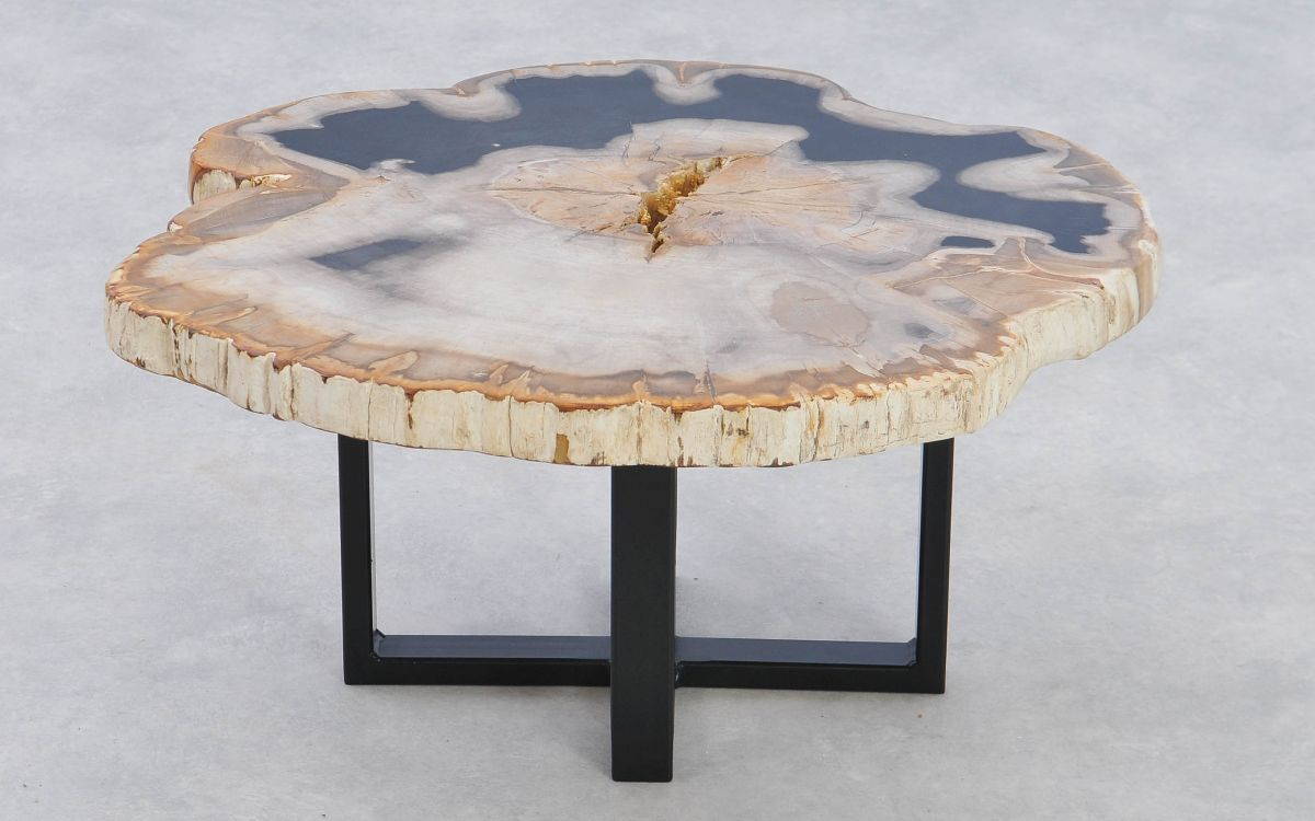 Couchtisch versteinertes Holz 37234