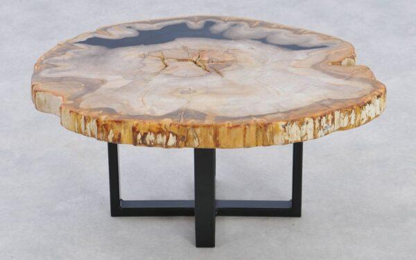 Couchtisch versteinertes Holz 37236