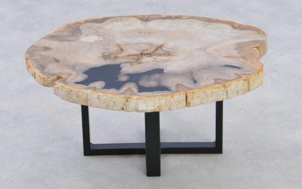 Couchtisch versteinertes Holz 37238
