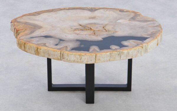 Couchtisch versteinertes Holz 37239