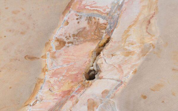 Couchtisch versteinertes Holz 37255
