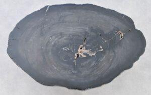 Couchtisch versteinertes Holz 37257