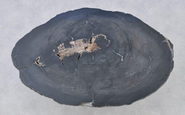 Couchtisch versteinertes Holz 37261