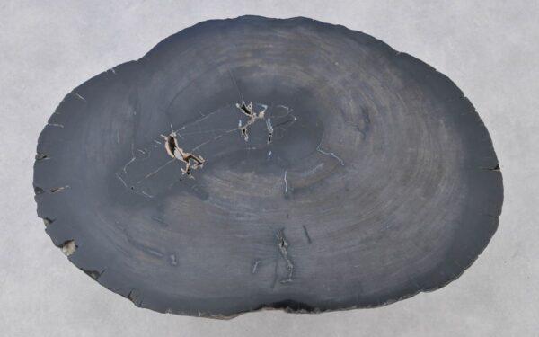 Couchtisch versteinertes Holz 37267