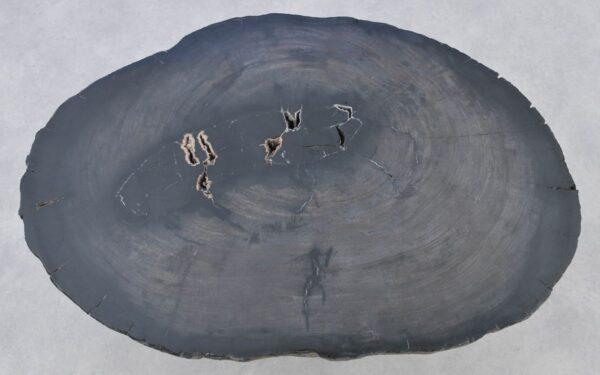 Couchtisch versteinertes Holz 37268