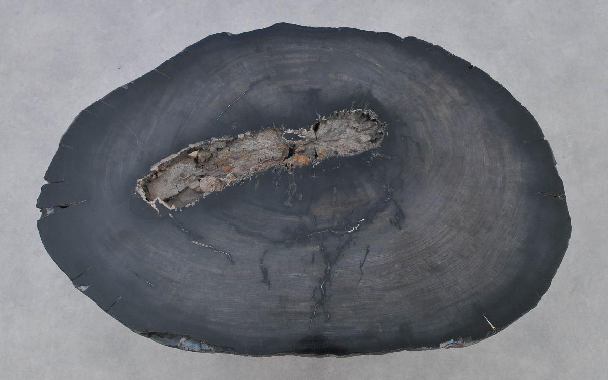 Couchtisch versteinertes Holz 37272