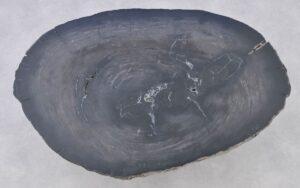 Couchtisch versteinertes Holz 37274