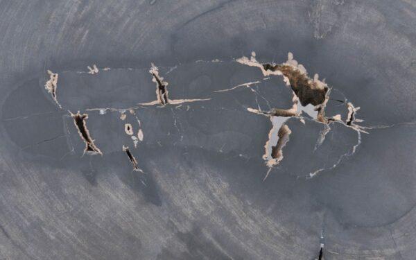 Couchtisch versteinertes Holz 37283