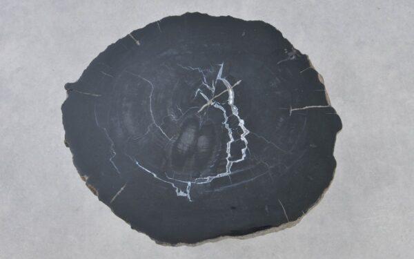 Couchtisch versteinertes Holz 37287