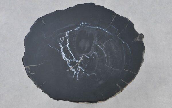 Couchtisch versteinertes Holz 37291