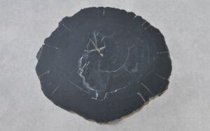 Couchtisch versteinertes Holz 37292