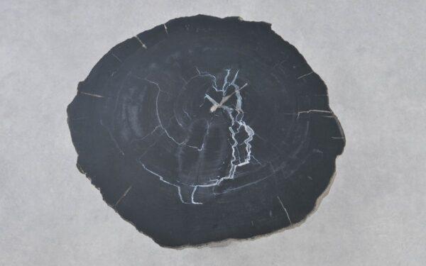 Couchtisch versteinertes Holz 37295