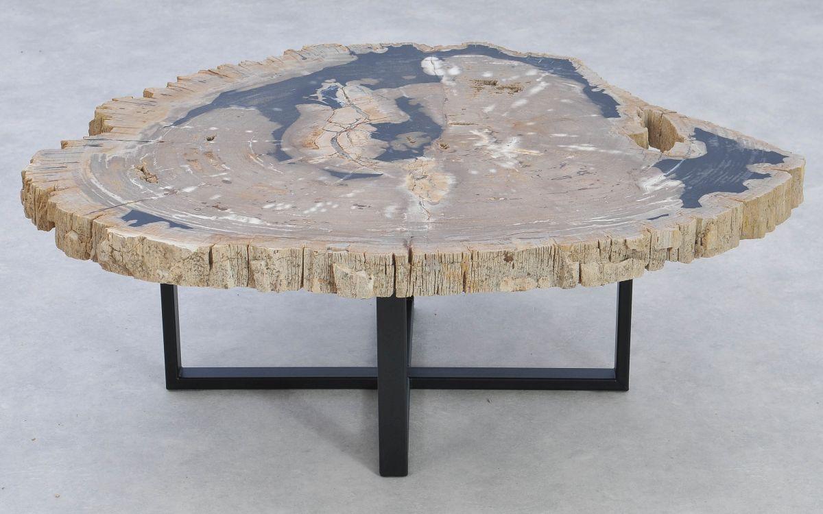 Couchtisch versteinertes Holz 37369