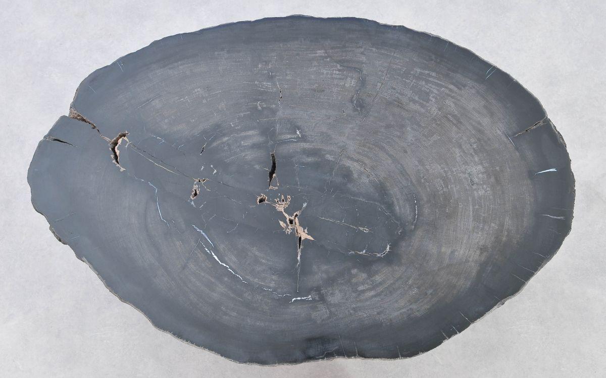 Couchtisch versteinertes Holz 37370