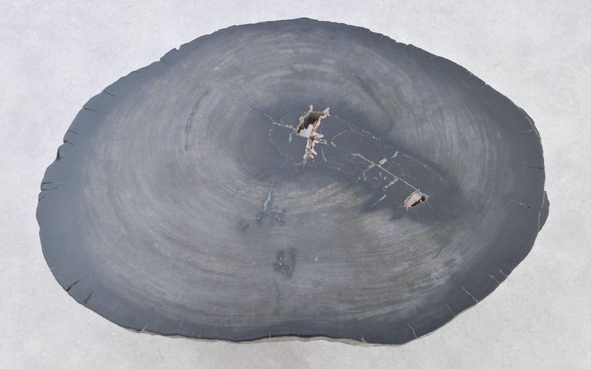 Couchtisch versteinertes Holz 37371