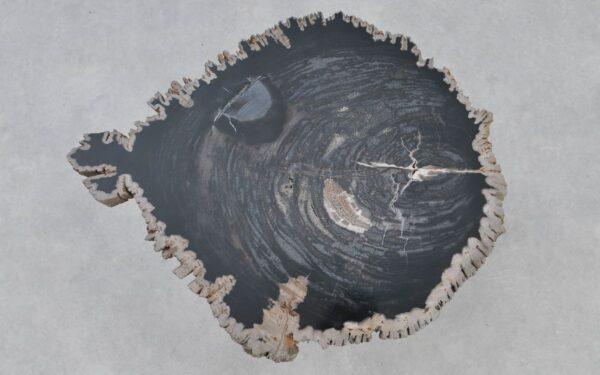Couchtisch versteinertes Holz 37375