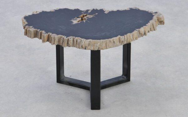 Couchtisch versteinertes Holz 37376